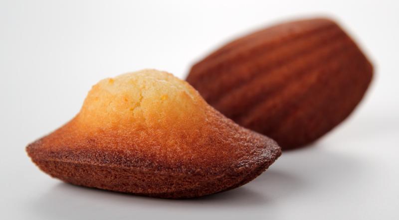 Shuktara Cakes - MADELEINE